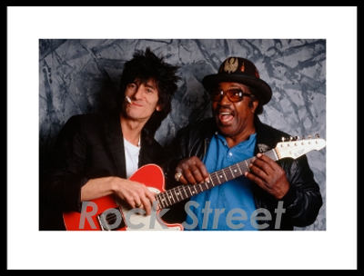 Ronnie Wood & Bo Diddley